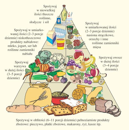 Dieta wegetariańska - piramida żywieniowa