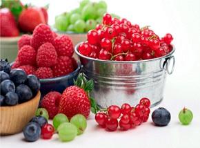 Dieta strukturalna dr. Bardadyna